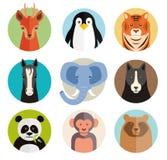 Sistema de los iconos animales del vector en botones redondos Imagen de archivo libre de regalías