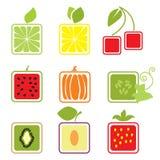 Sistema de los iconos de las frutas y de las bayas, colección del logotipo ilustración del vector