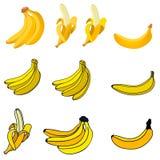 Sistema de los iconos frescos del plátano Imágenes de archivo libres de regalías