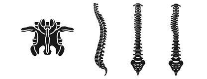 Sistema de los iconos de la espina dorsal, estilo simple stock de ilustración