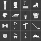 Sistema de los iconos para el esquí y los deportes de invierno stock de ilustración