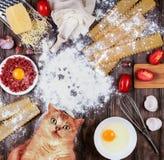 Sistema de los ingredientes para cocinar las lasañas italianas Visión superior fotografía de archivo