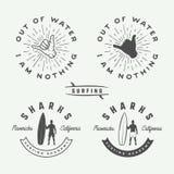 Sistema de los logotipos, de los emblemas, de las insignias, de las etiquetas y del diseño que practican surf del vintage Imágenes de archivo libres de regalías