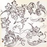 Sistema de los ornamentos caligráficos del remolino del vector para el diseño Imágenes de archivo libres de regalías