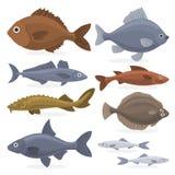 Sistema de los pescados Colección de la fauna acuática ilustración del vector