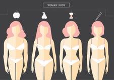 Sistema de los tipos de la forma del cuerpo femenino, ejemplos Foto de archivo