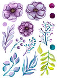 Sistema de luz Violet Flowers And Leaves de la acuarela Fotos de archivo
