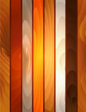 Sistema de madera del vector Fotografía de archivo