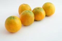 Sistema de mandarinas Foto de archivo libre de regalías