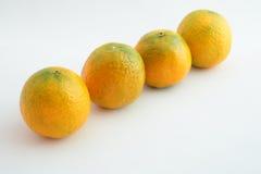 Sistema de mandarinas Fotografía de archivo libre de regalías