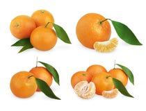 Sistema de mandarinas maduras con las hojas y las rebanadas Fotos de archivo