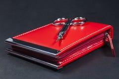 Sistema de manicura rojo Imágenes de archivo libres de regalías