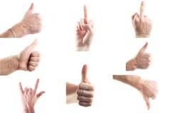 Sistema de manos masculinas que muestran muestras Imagen de archivo libre de regalías
