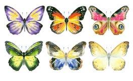 Sistema de mariposas de la acuarela Imagenes de archivo