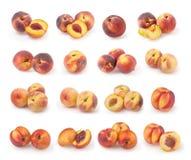 Sistema de melocotones y de nectarinas aislados en blanco Fotografía de archivo libre de regalías