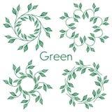 Sistema de 4 modelos circulares Hojas del verde en un círculo Con verde de la inscripción Fotos de archivo libres de regalías