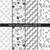 Sistema de modelos del vector con diseño floral Imagenes de archivo