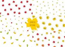 Sistema de modelos de las hojas de otoño stock de ilustración