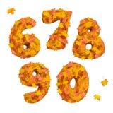 Sistema de números tridimensionales enormes del otoño: 6, 7, 8, 9, 0 Fotos de archivo