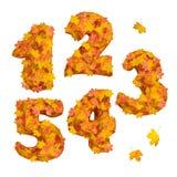 Sistema de números tridimensionales enormes del otoño: 1, 2, 3, 4, 5 Imágenes de archivo libres de regalías