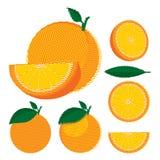 Sistema de naranjas enteras y partidas en dos con las hojas Imagen de archivo libre de regalías
