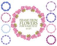 Sistema de nueve guirnaldas de flores Frontera de las flores para el texto Imagen de archivo libre de regalías