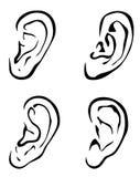 Sistema de oídos del esquema libre illustration