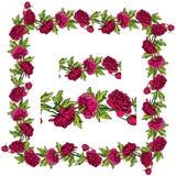 Sistema de ornamentos - frontera y marco florales dibujados mano decorativa fotos de archivo libres de regalías