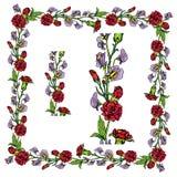 Sistema de ornamentos - frontera y marco florales dibujados mano decorativa Foto de archivo
