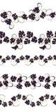 Sistema de ornamentos inconsútiles con las vides de uvas Imagenes de archivo