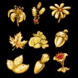 Sistema de oro de flores, de hojas y de verduras libre illustration