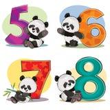 sistema de osos de panda lindos del bebé con números ilustración del vector