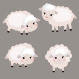 Sistema de ovejas lindas Imagen de archivo libre de regalías