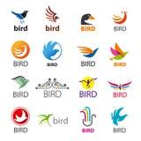 Sistema de pájaros de los logotipos del vector ilustración del vector