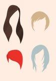 Sistema de pelo de la muchacha Foto de archivo libre de regalías