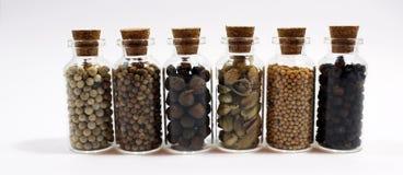 Sistema de pequeños beneficiarios llenados de los condimentos Foto de archivo