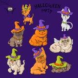 Sistema de personajes de dibujos animados lindos de la historieta de un gato y de un perro en sombreros del wald en el estilo de  libre illustration