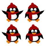 Sistema de pingüinos divertidos de la historieta Imágenes de archivo libres de regalías