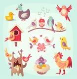 Sistema de pájaros coloridos de la primavera Imágenes de archivo libres de regalías
