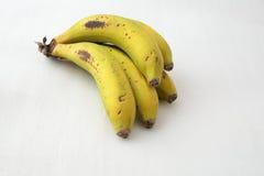 Sistema de plátanos Fotografía de archivo libre de regalías