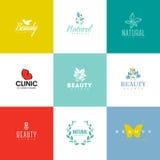 Sistema de plantillas y de iconos del logotipo de la belleza y de la naturaleza Imagen de archivo libre de regalías