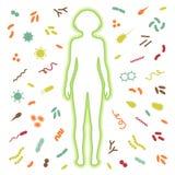 Sistema de protección inmune Imágenes de archivo libres de regalías