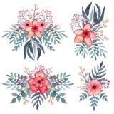 Sistema de ramos de la acuarela con las flores rojas tropicales Fotografía de archivo libre de regalías