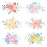 Sistema de ramos dibujados mano de la flor Imágenes de archivo libres de regalías