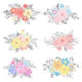 Sistema de ramos dibujados mano de la flor Fotografía de archivo libre de regalías