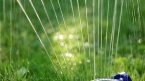 Sistema de rociadores del césped en jardín en hierba Asperje los esprayes riegan en la hierba verde en el jardín en un fondo de almacen de video