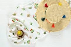 Sistema de ropa para mujer, pullo blanco del gráfico del cactus de los accesorios Foto de archivo