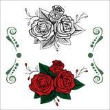 Sistema de rosas, colorante, gráficos Fotos de archivo