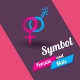 Sistema de símbolo masculino y femenino Vector Imagenes de archivo