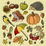 Sistema de símbolos del otoño stock de ilustración